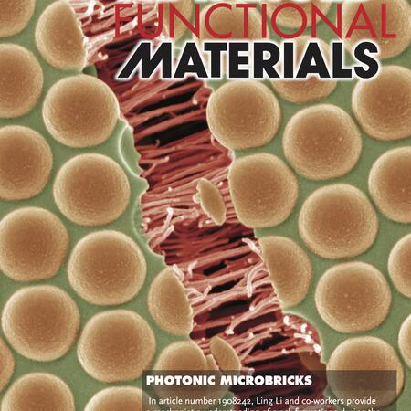Li 20202, Advanced Functional Materials cover