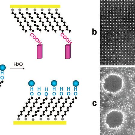 Controlled amorphous-to-crystalline transitions 1