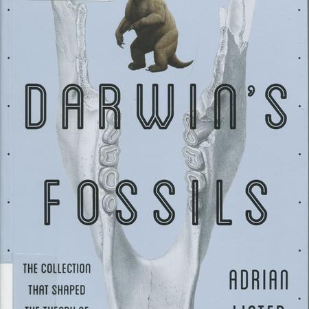 Darwin's fossils: the collection that shaped the theory of evolution