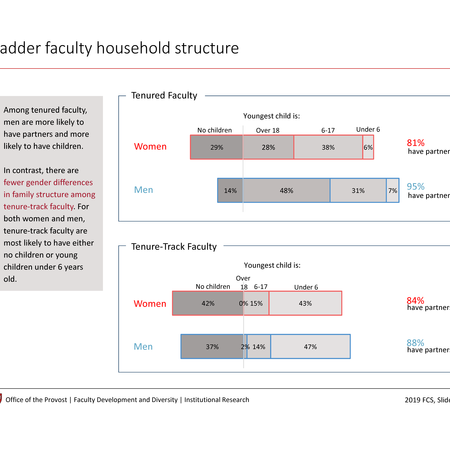 Ladder faculty household structure