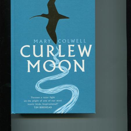 Curlew moon