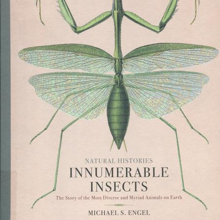 Natural histories, innumerable insects: the story of the most diverse and myriad animals on earth