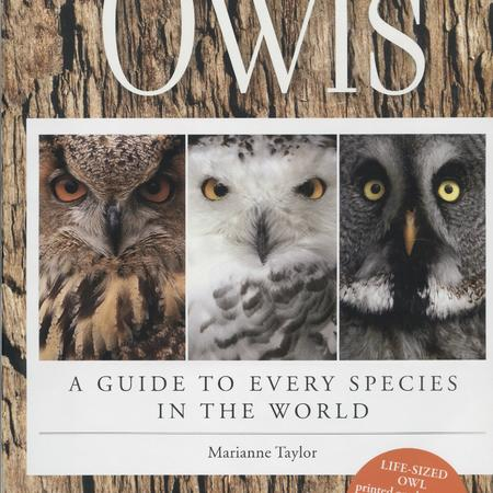 Owls: a guide to every species in the world
