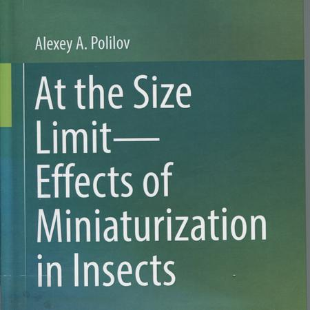At the size limit--effects of miniaturization in insects