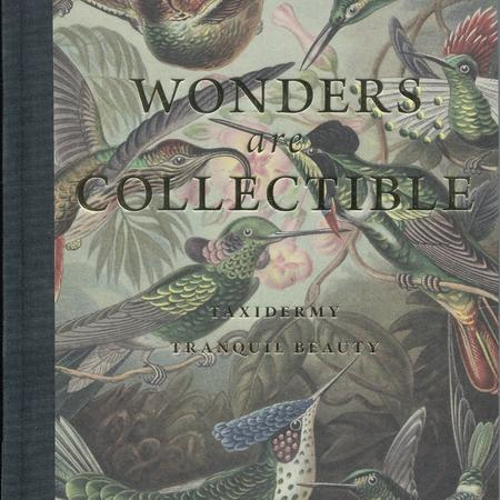 Wonders are collectible: taxidermy, tranquil beauty