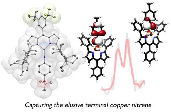 The elusive terminal copper nitrene