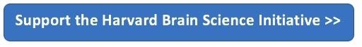 Support the Harvard Brain Science Initiative