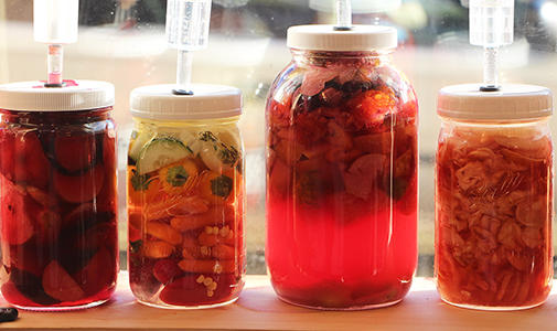 Four jars with liquid and food fermenting in a window.