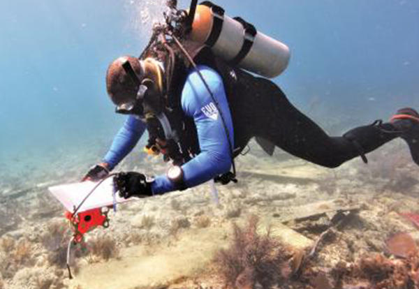 Man with scuba equipment diving in the ocean.