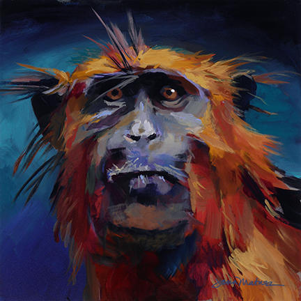 Painting of a Western Red Colobus.