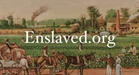 Link to Enslaved.org