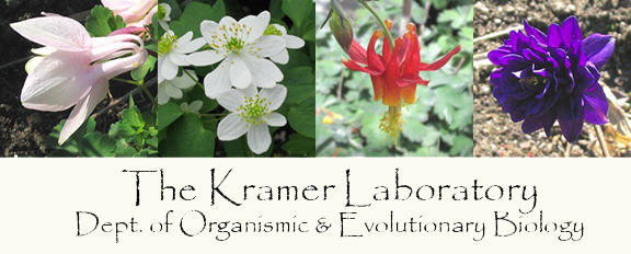 The Kramer Laboratory, Organismic and Evolutionary Biology Department