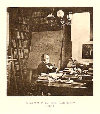 Agassiz in his library, 1861