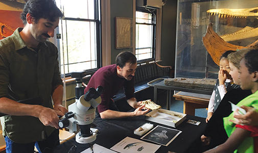Meet a Scientist at the Harvard Museum of Natural History