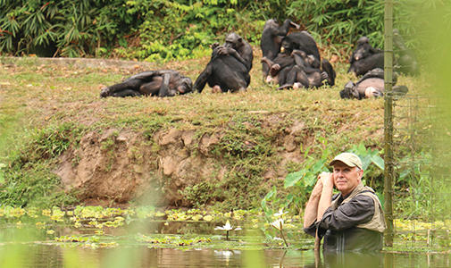 Self-Domestication in Bonobos and Other Wild Animals Lecture Image with Richard Wrangham