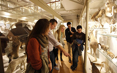 Students in the Harvard Museum of Natural History