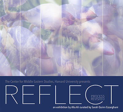 Reflect: Process Revisited