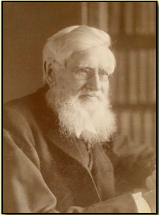 Alfred Russel Wallace 1880s