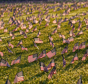 American flags in the ground / AP Photo/J. Scott Applewhite