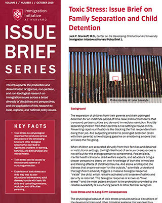 policy brief cover, Toxic Stress: Issue Brief on Family Separation and Child Detention