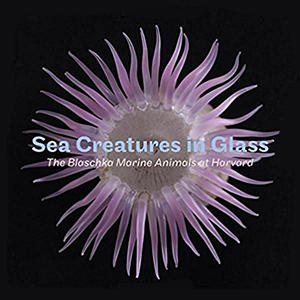 "Image of the book ""Sea Creatures in Glass"""