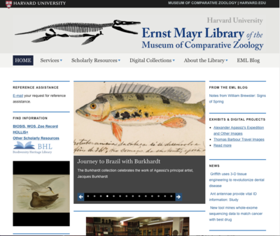 The Ernst Mayr Library website homepage
