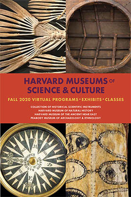 Harvard Museums of Science & Culture Fall 2020 Virtual Programs, Exhibits, Classes.