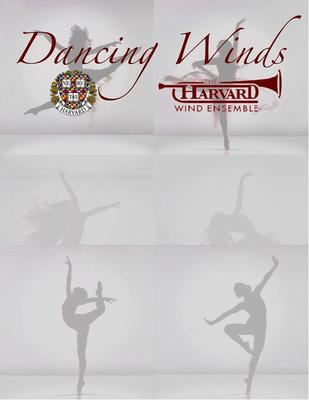 Dancing Winds poster