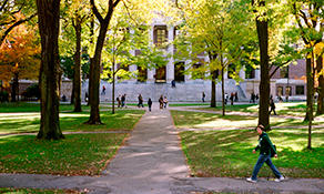 students walking in harvard yard