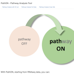 Screenshot from the PathOn online resource home page