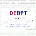 Square logo for DIOPT online resource