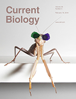 Current_Biology_cover_2018a