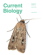 current_biology_cover_2018b.png