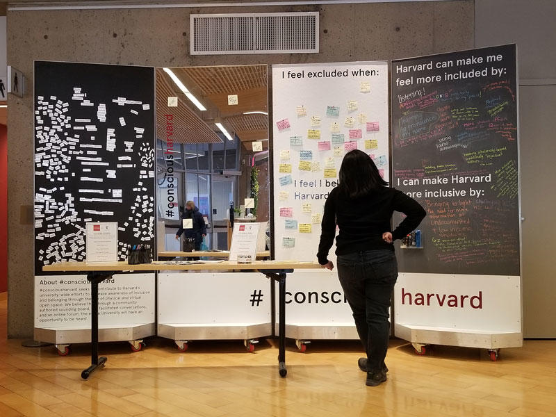 person gazing at conscious harvard board.