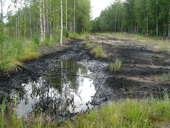 An oil spill in a forest in Western Siberia
