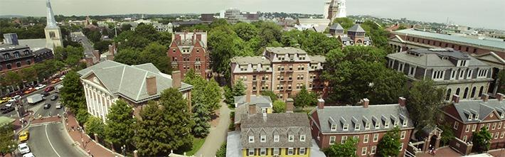 Harvard Yard Panoramic