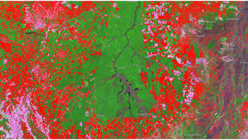 Satellite Imaging of Deforestation in the Amazon