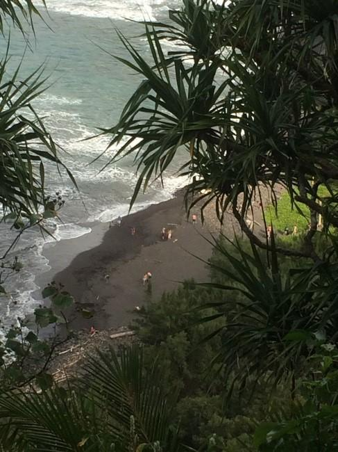 The view of EPS concentrators from above the Polulu Valley beach.