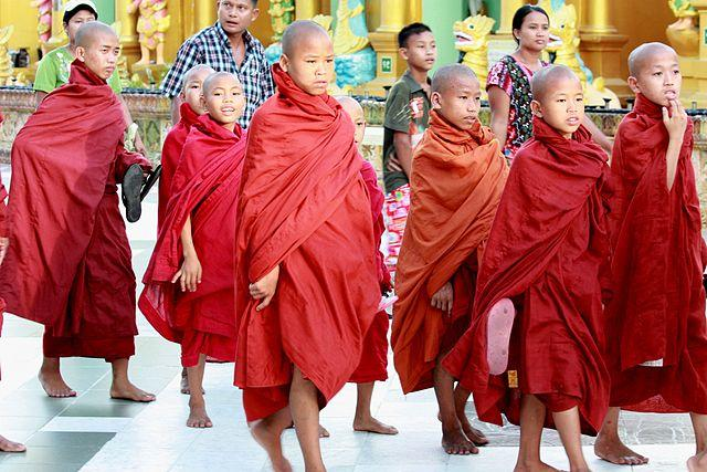 Young monks stand together
