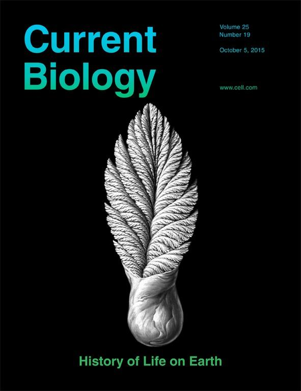 Current_Biology_Cover_2015