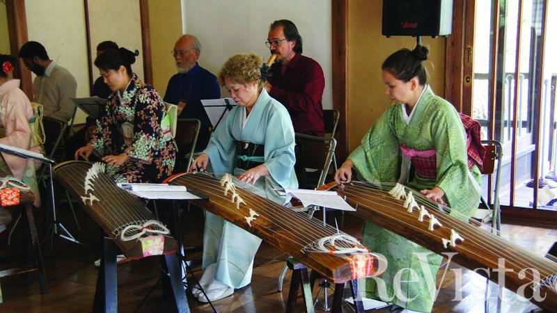 Traditional Japanese instruments