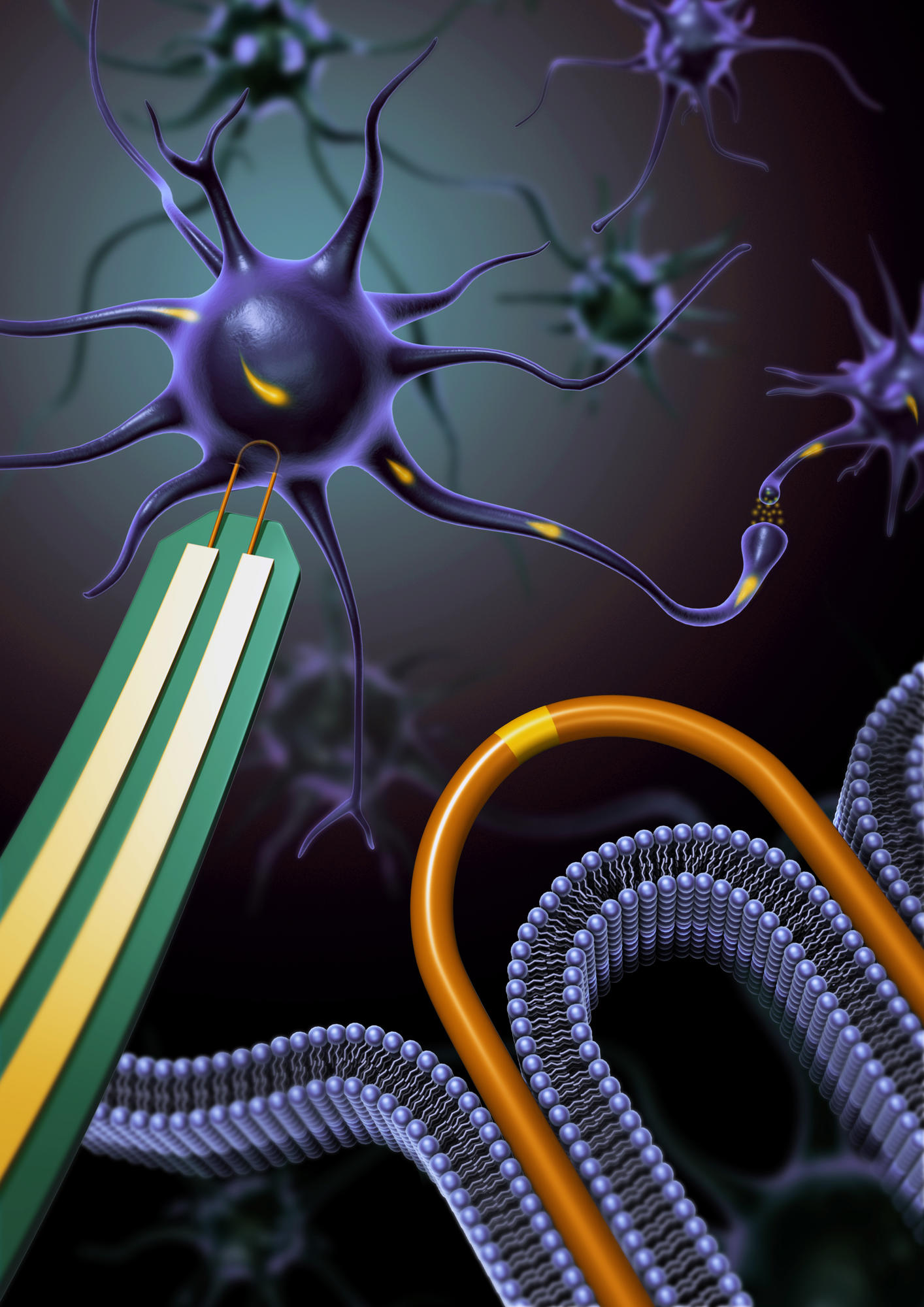 An army of nanowire devices could accelerate research on how our brain and cardiac cells communicate