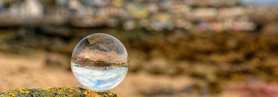 Climate Change And The Crystal Ball Of Vector Borne