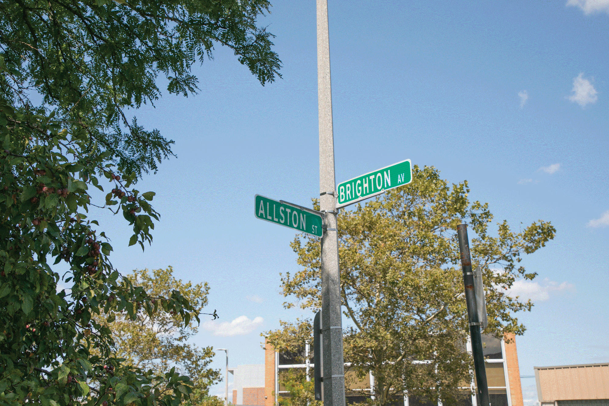 Allston-Brighton street sign