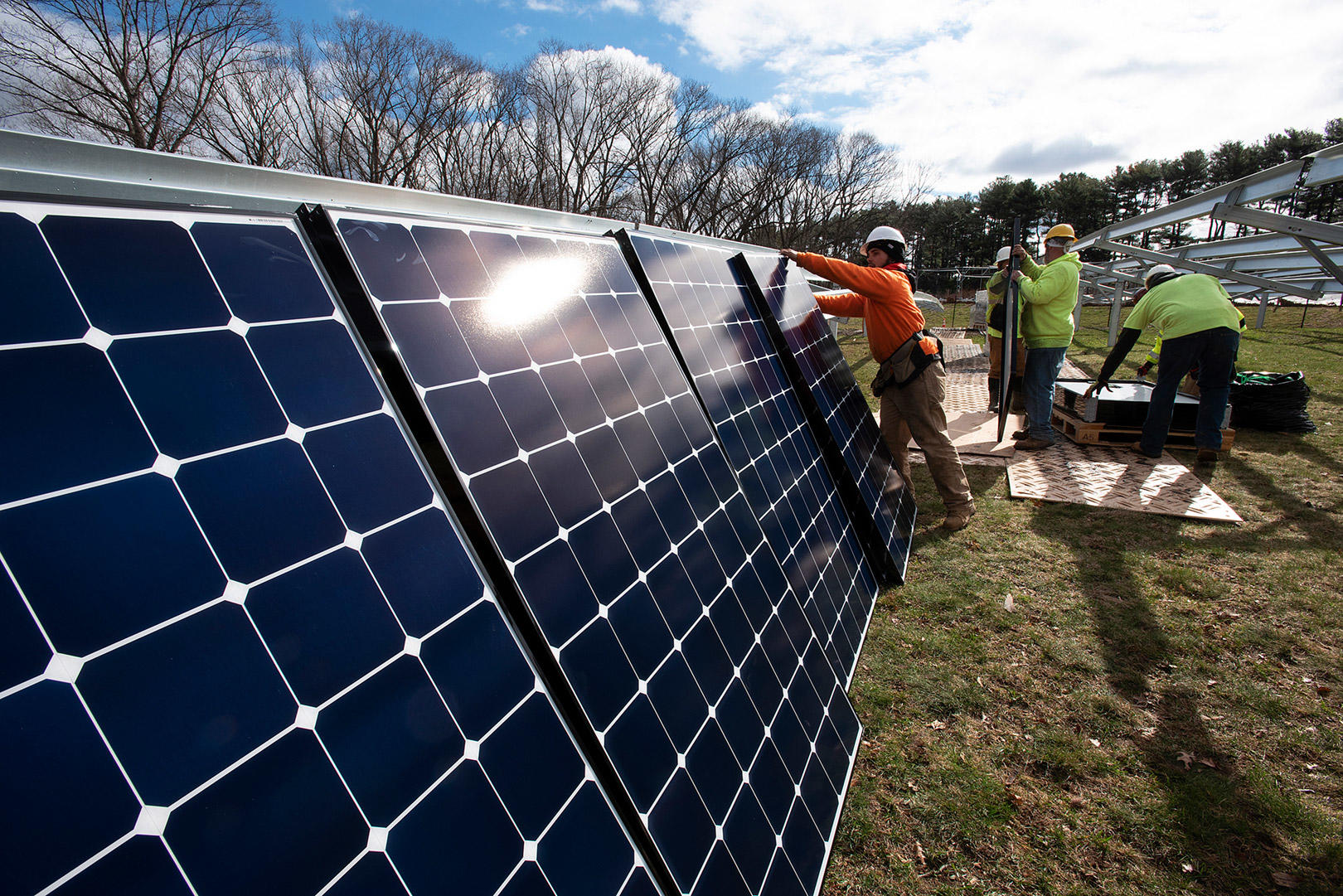 Solar installation at Arnold Arboretum