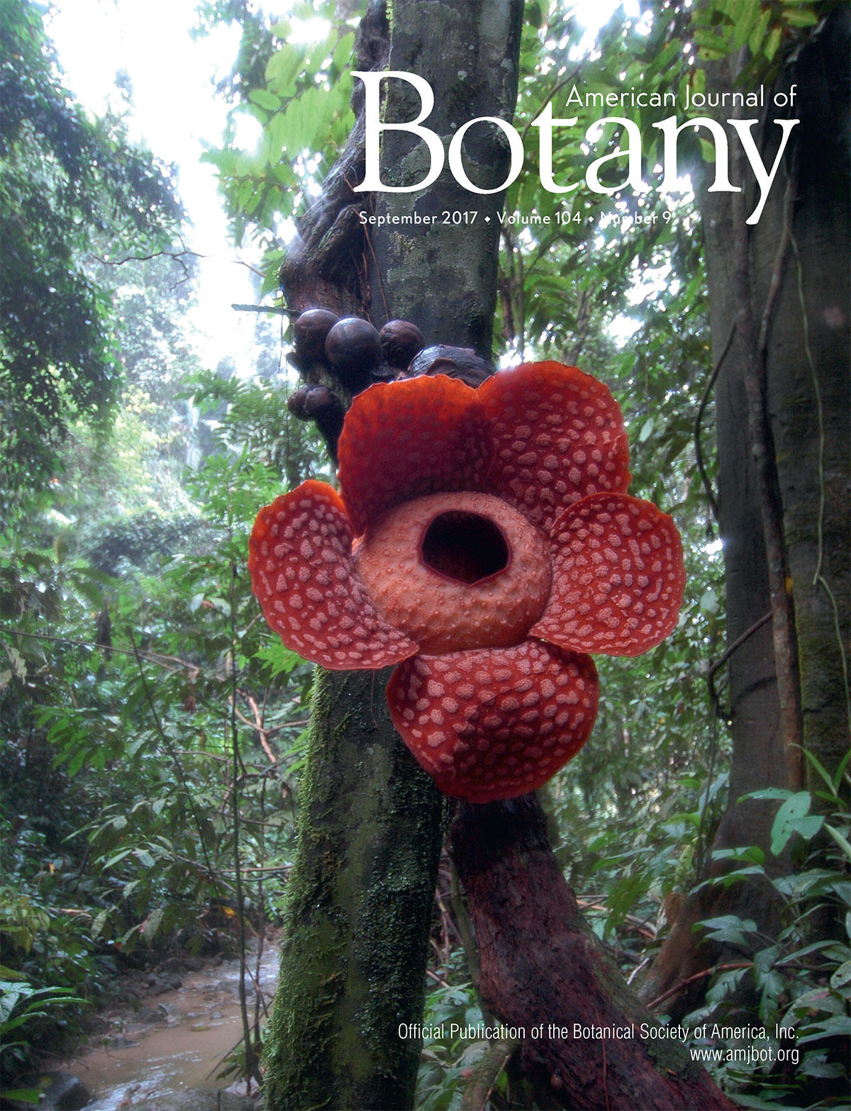 September 2017 Botany Cover