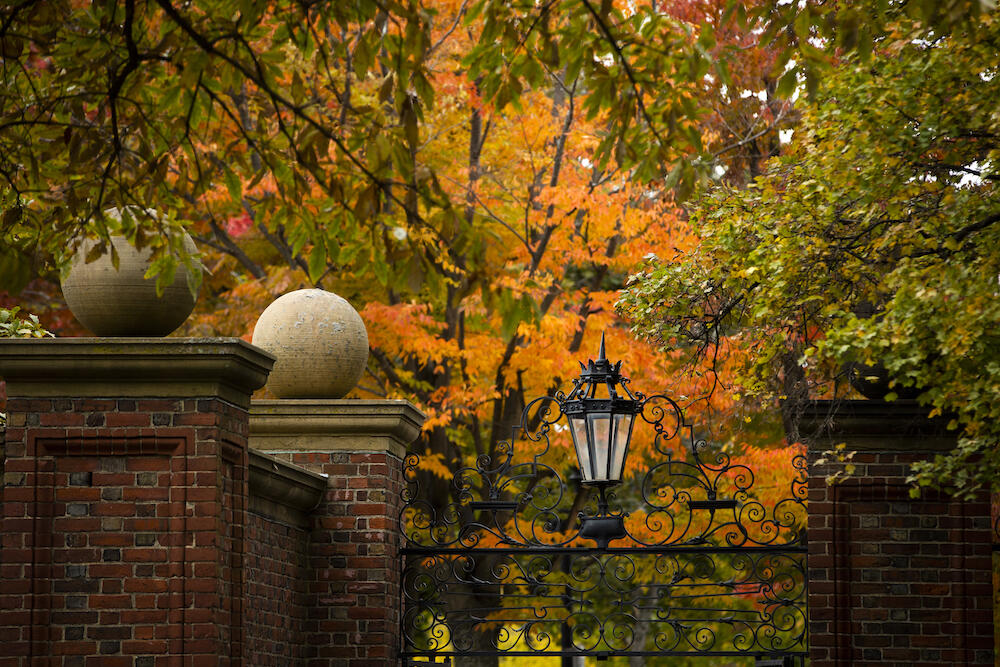 Harvard gates surrounded by fall foliage