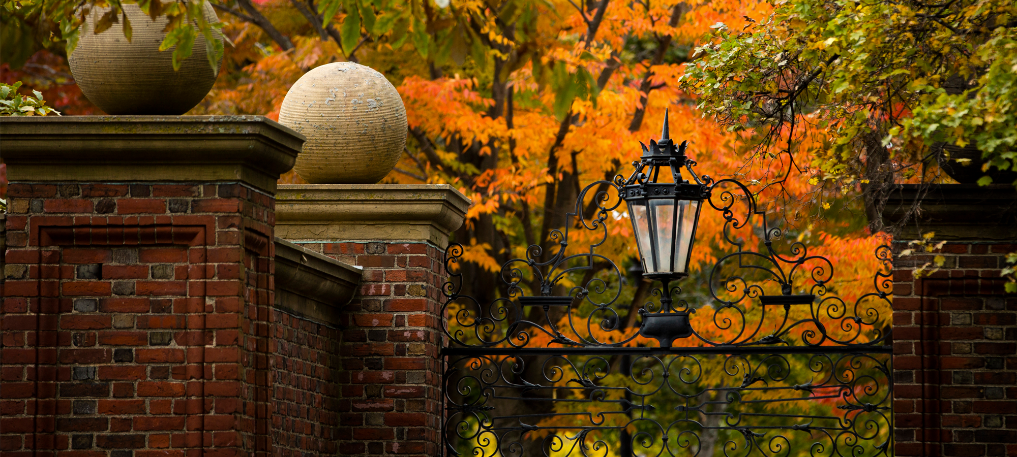 Harvard gates in the fall