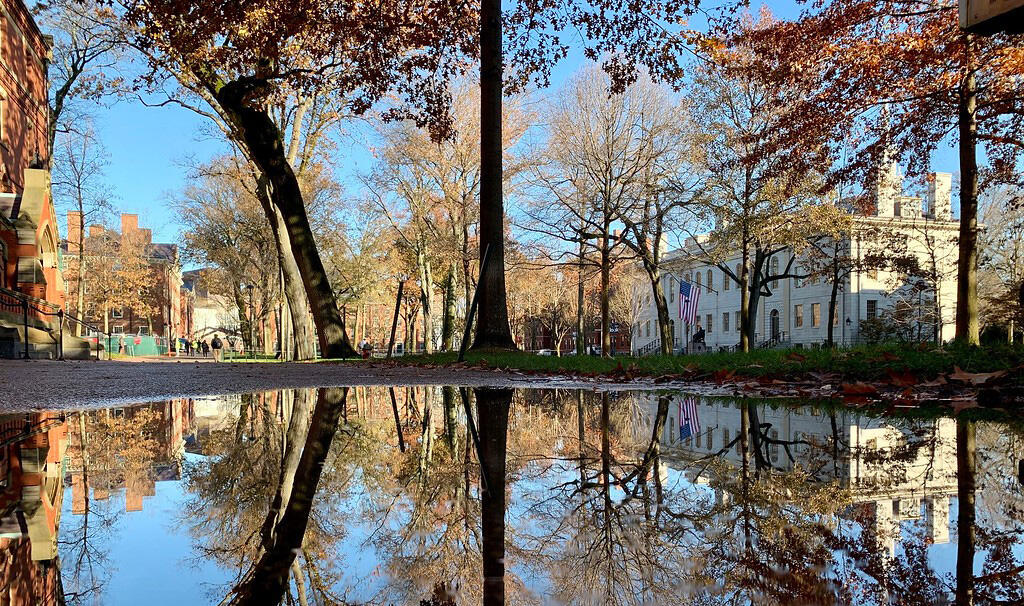 Harvard Yard with reflection in a puddle