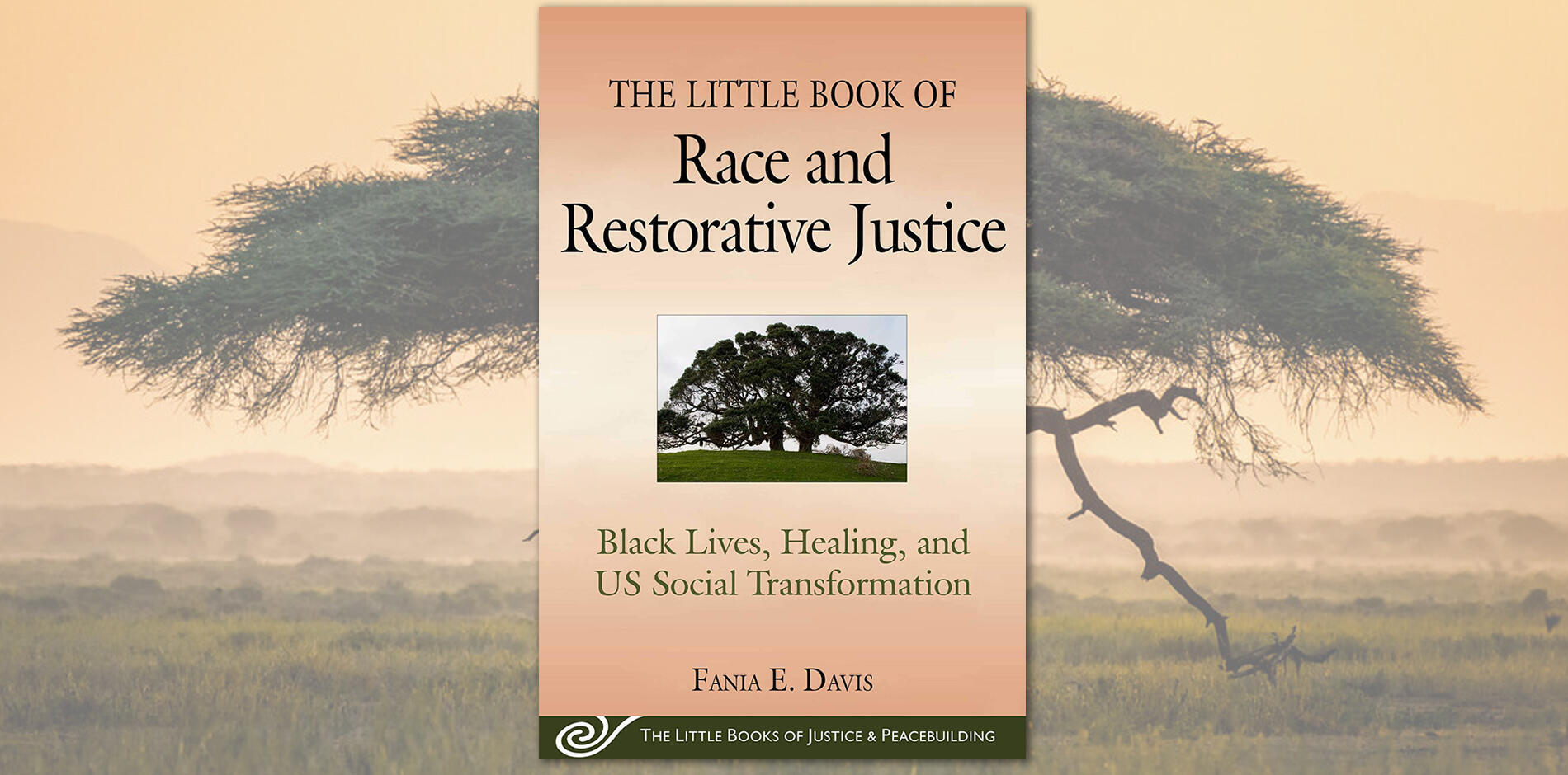 Little Book of Race and Restorative Justice
